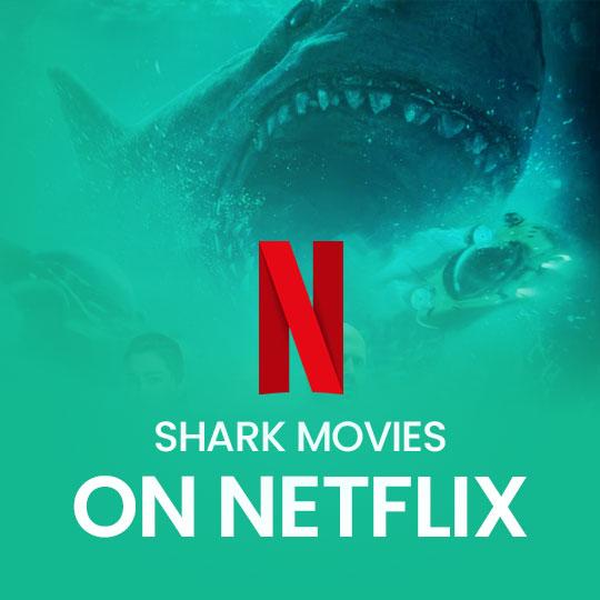 The Best Shark Movies on Netflix